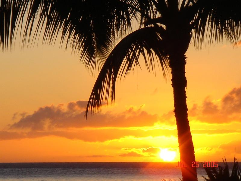 Hawaii Sunset - Deluxe Condo in Old Lahaina Town - Lahaina - rentals