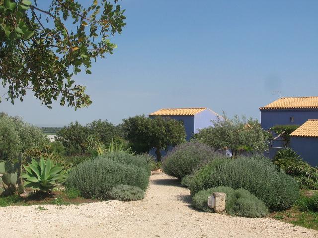 la casa è quella a sinistra - il giardino delle case blu - Modica - rentals