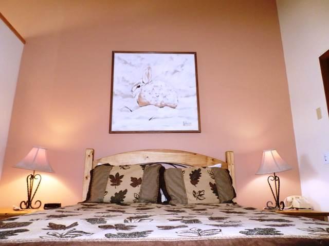Mountainside 27-Premium - Image 1 - Granby - rentals