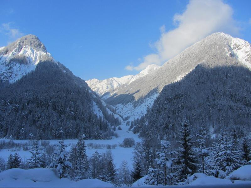 winter view from the living room - House with an outstanding view - Kranjska Gora - rentals