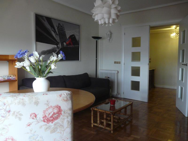Living room - Apartment Marina de Pasaia - San Sebastian - Donostia - rentals