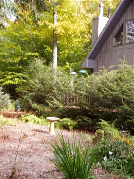 Front yard - Year-Round Adirondack Chalet - Saranac Lake - rentals