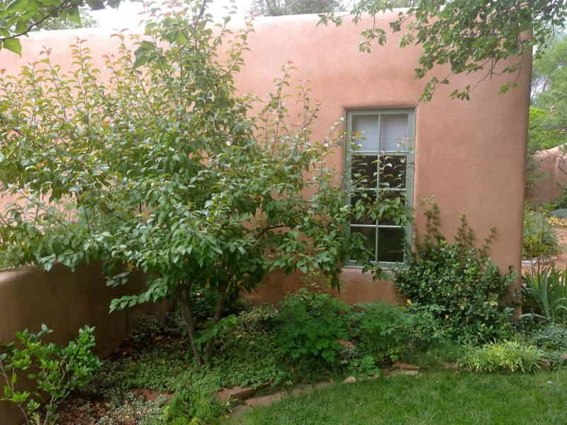 Exterior - Cozy and Quiet Santa Fe Casita - Santa Fe - rentals