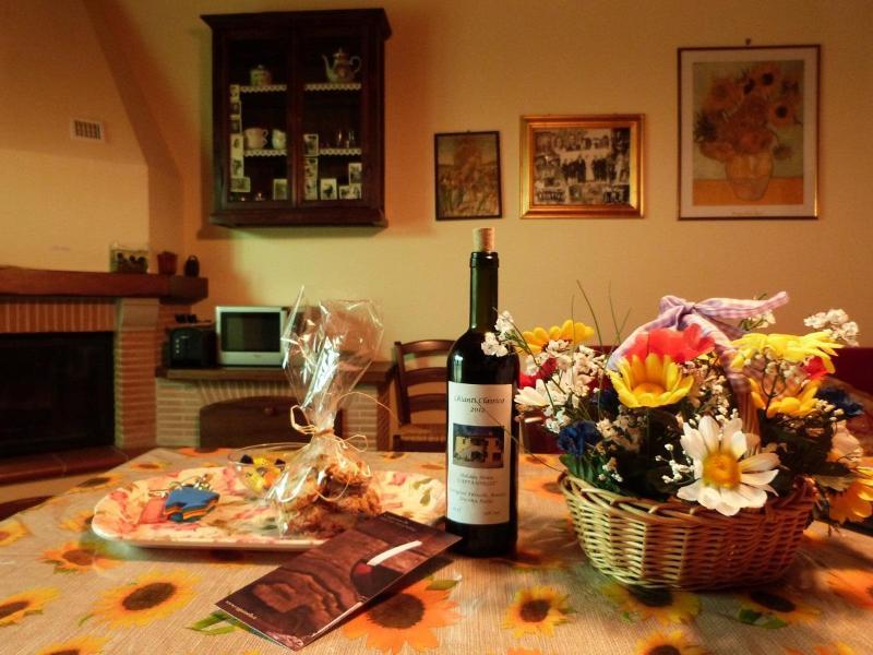 Little Love Nest: a Warm Welcome! - Little Love Nest in Tuscany Wifi Pool, Cappannelle - Castiglion Fibocchi - rentals