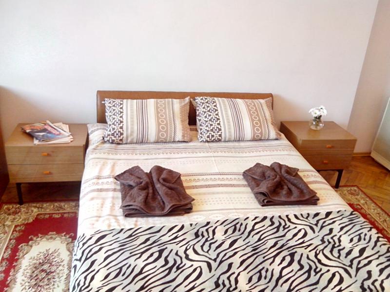Beautiful and cozy studio apartment on Shevchenko Ave. - Image 1 - Lviv - rentals