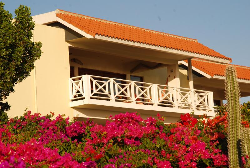 MaBoJo at top floor in great flora! - MaBoJo Boca Gentil Jan Thiel  seaside penthouse - Willemstad - rentals
