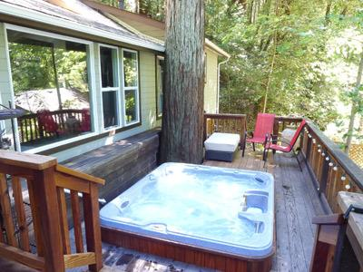 Above and Beyond, Hot Tub, Dog Friendly, - Above And Beyond - Guerneville - rentals