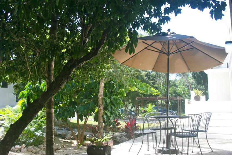 Studio Apartment Private Patio with Al Fresco Dining - New AKUMAL Family Studio KITCHEN, WIFI & AIRCO - Akumal - rentals