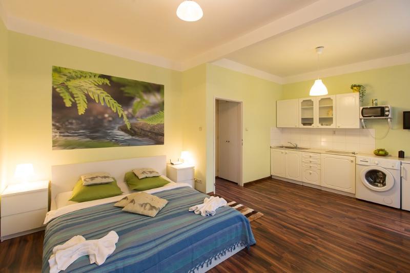 Apartment for friends - Image 1 - Prague - rentals