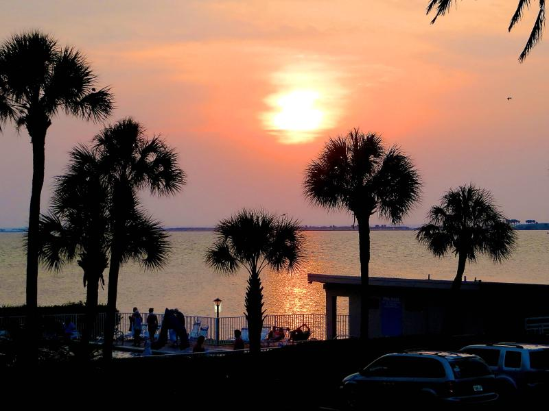 View from the balcony - Airport, Clearwater, Downtown & Busch Gardens - Tampa - rentals