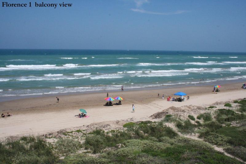 view from balcony - Beachfront PARADISE at it's best! Awesome views! S - South Padre Island - rentals