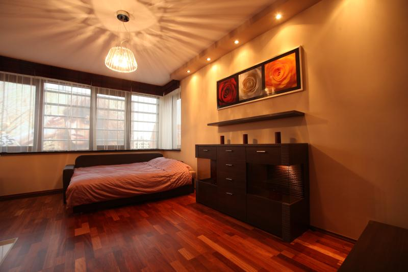 Luxury Apartment in the centre of the city - Image 1 - Wroclaw - rentals