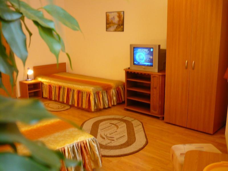 Chriss House - Image 1 - Brasov - rentals