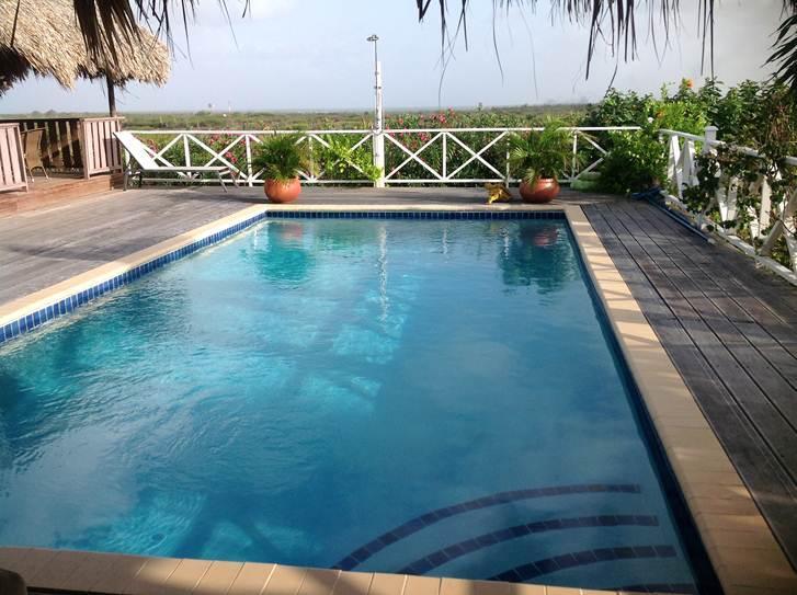 large pool - Large Hill Top House Great Island Round Views Large Pool Ocean View. Good Price - Kralendijk - rentals