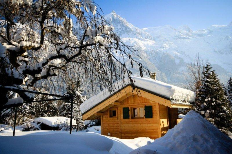 Mazot with Mt Blanc backdrop - Charming 1 bedroom Mazot style chalet in Chamonix - World - rentals