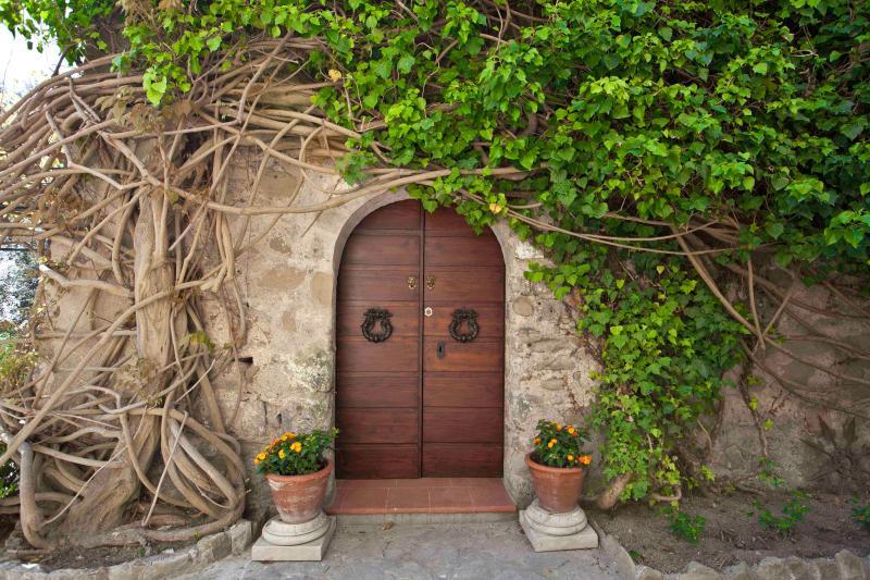 open the door of a dream - Villa Garden,sea view,terraces,pool and Jacuzzi - Massa Lubrense - rentals