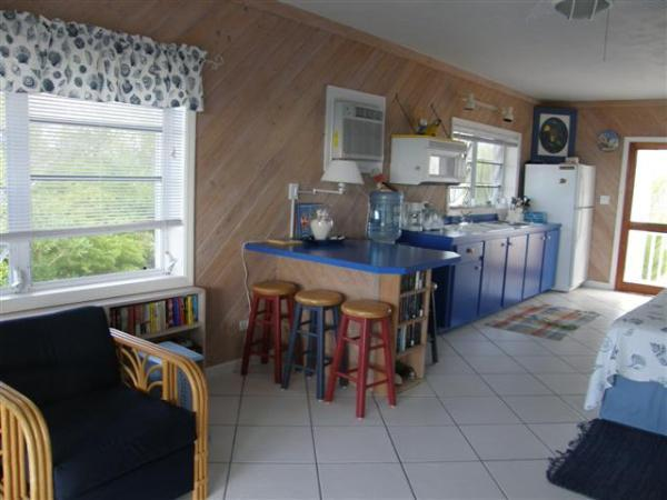 Kitchen area includes an bar, a counter and cabinets with a double sink, microwave and electric stove top.  There is also a full size refrigerator /freezer.   There are cooking utensils for cooking if you want to eat in. - Bahamian Mood - Clarence Town - rentals