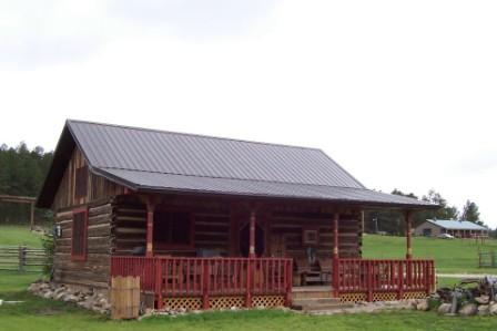 Front view,=...EZ parking - Restored log barn/cabin - Nemo - rentals