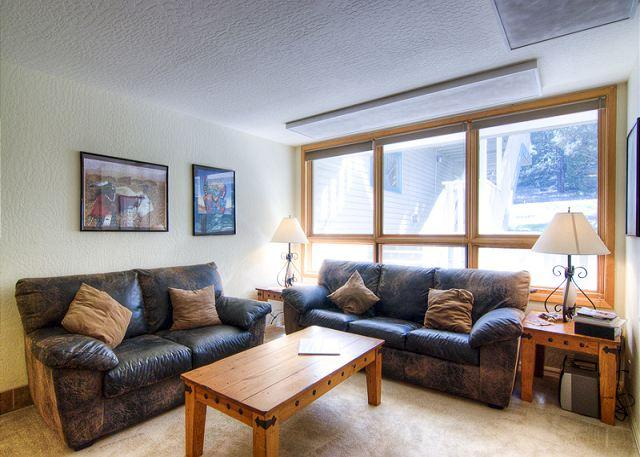 WINTER WONDER CONDO - Image 1 - Angel Fire - rentals