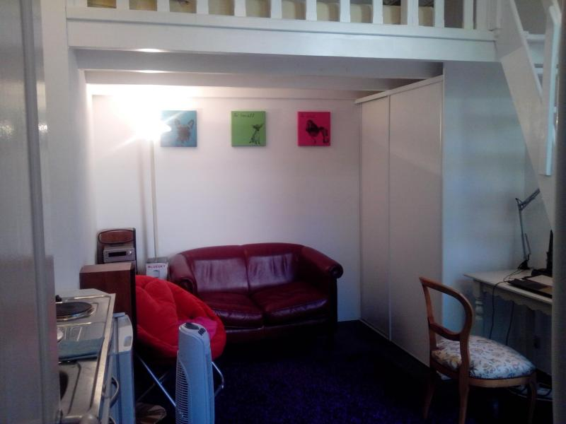 sofa bed - lovely loft in heart of Nice center - Nice - rentals