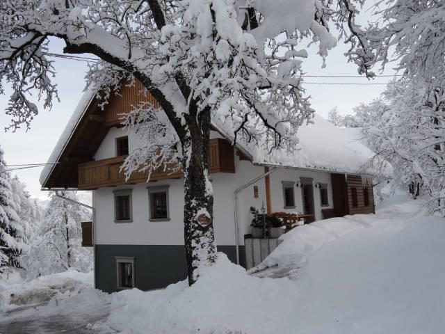 turist farm Dolinar Krainer slovenia bled lake - Image 1 - Bohinjska Bela - rentals