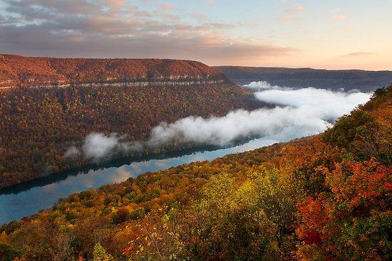 Tennessee River Gorge - Tennessee River Gorge Island Cabin 2  15 mi. Chatt - Chattanooga - rentals