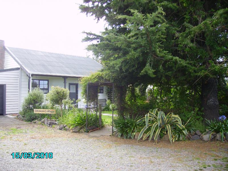 Stunning country views - Image 1 - Greytown - rentals