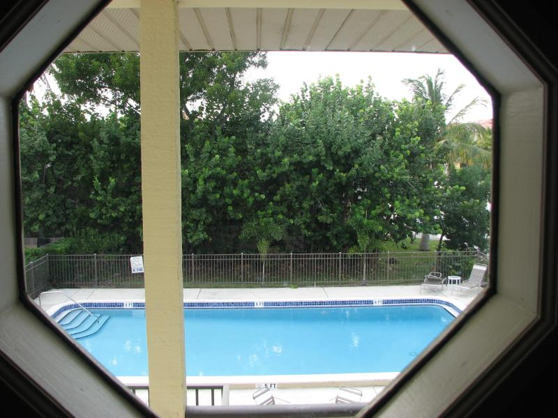 View of the Pool - Beautiful Fully Furnished Naples Condo 2bd 2bath, - Naples - rentals