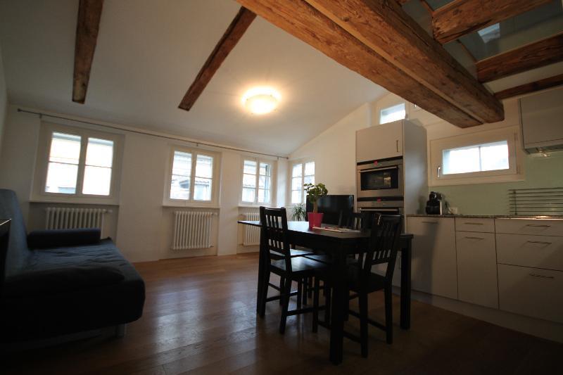ZH Schmidgasse III - HITrental Apartment Zurich - Image 1 - Zurich - rentals