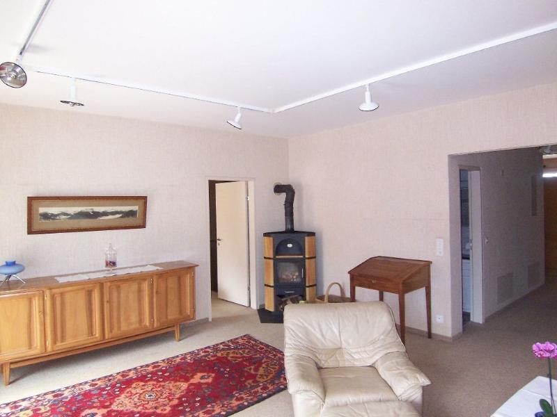 "Living room - ****Holiday apartment ""Zentrum Apartment"" in holid - Interlaken - rentals"