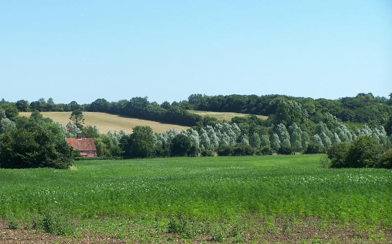 Sweet cottage on a working Suffolk  farm - Image 1 - Saxmundham - rentals