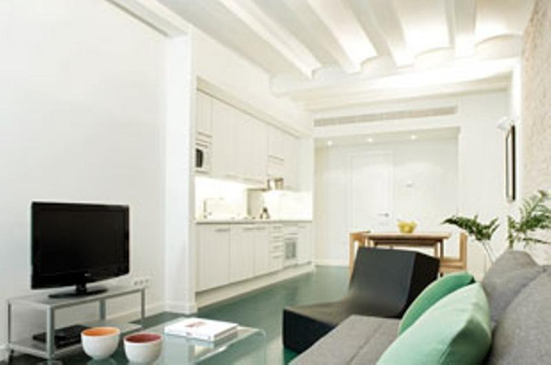Living Room - 3 Bedrooms apartment in the centre of Barcelona - Barcelona - rentals