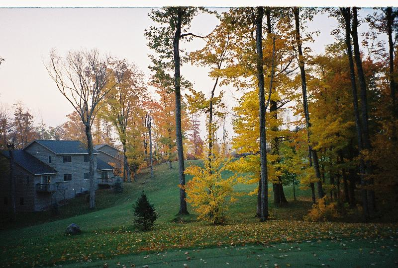 The rear of our townhouse sits on a beautiful golf course - Lakewoods Getaway   Townhouse in Cable, WI - Cable - rentals