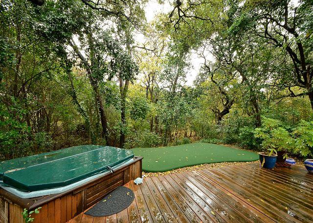 Hot Tub - 4BR/2BA Huge August discounts Home With Hot Tub, Putting Green & Close Zilker - Austin - rentals