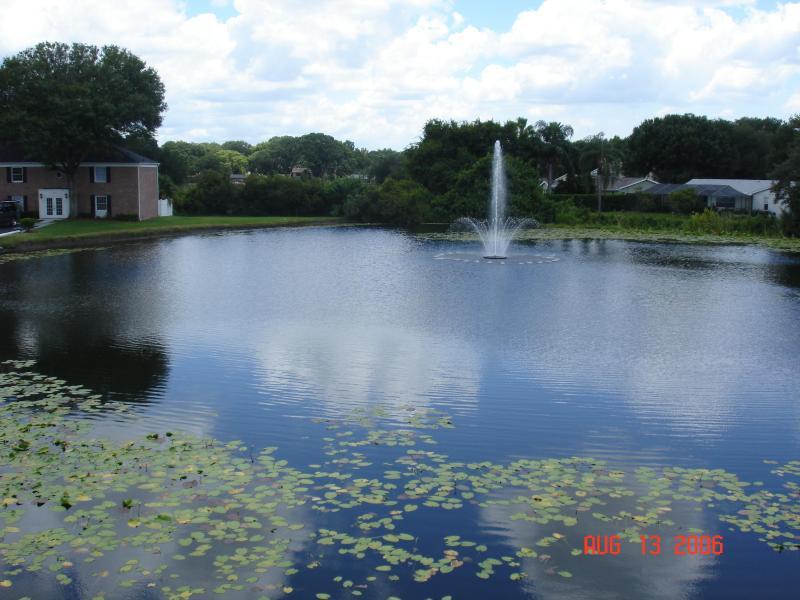 Pond View - Beautiful condo close to Busch Gardens - Tampa - rentals