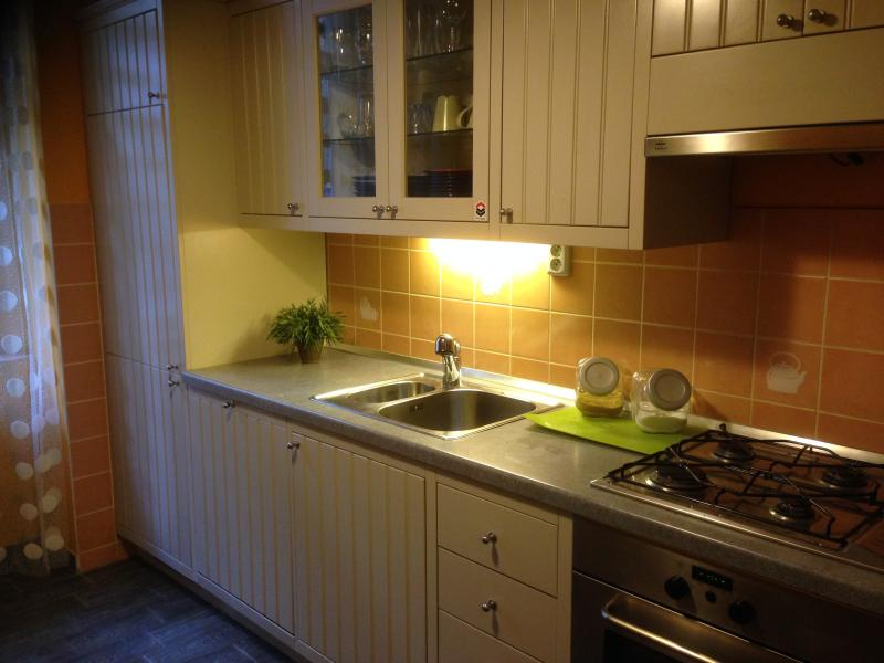 The Super Kitchen - Central Apartment - Prague - rentals