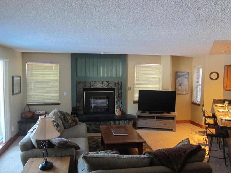 Living Room - Ski-in/ski-out Breckenridge 2BR - on ski run - Breckenridge - rentals