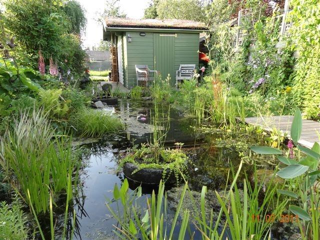 the water garden is a garden reserve - Green, sportive experience in rural Amsterdam - Amsterdam - rentals