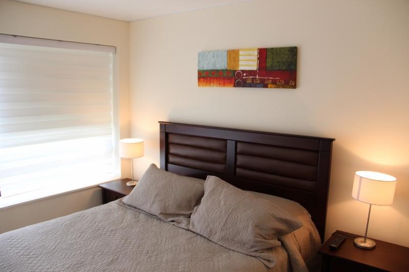Apartment 1 - Apartments  Excellent location in Providencia - Santiago - rentals
