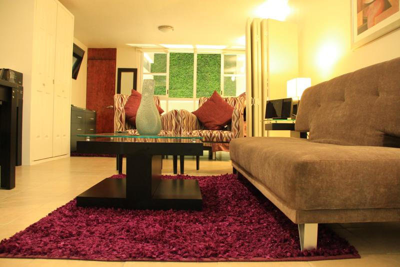 AMAZING STUDIO AVAILABLE 4 WINTER HOLIDAYS - Image 1 - Mexico City - rentals