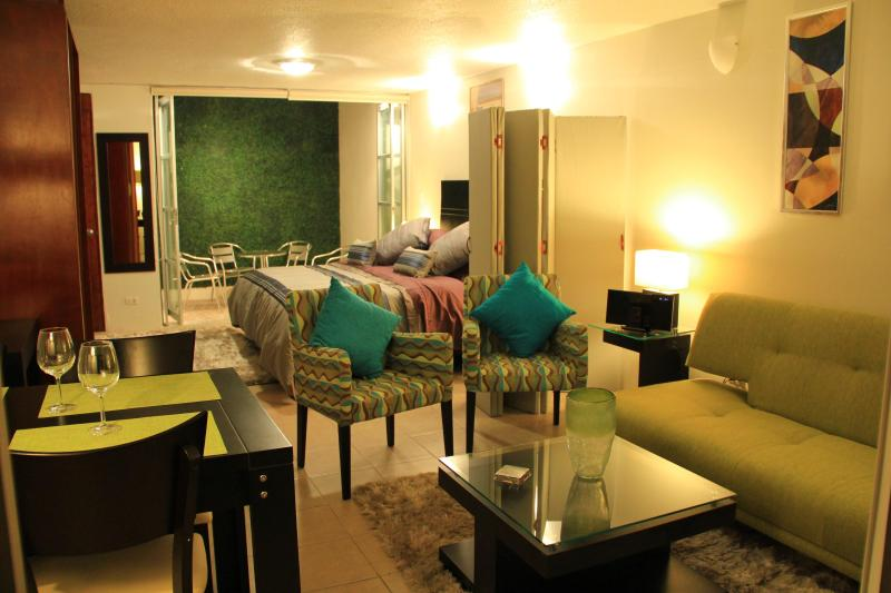 WOW! STUDIO *1/2 PRICE JULY & AUG* (See details) - Image 1 - Mexico City - rentals