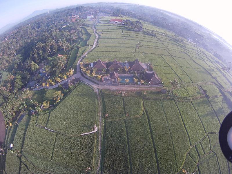 tegalalang villa vano rice field view - Image 1 - Tegalalang - rentals
