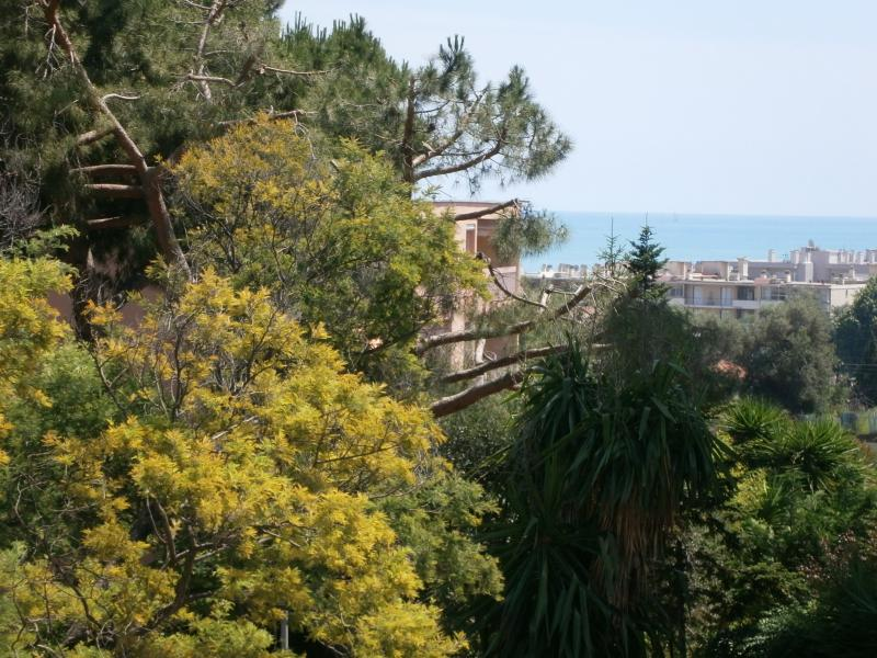sea view from terrace - Large Studio with Deep Sea View Terrace, Pet-Friendly - Cagnes-sur-Mer - rentals