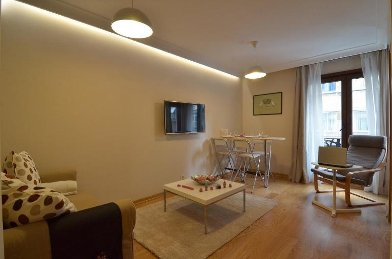 Living room - Staylish Cosy flat in Central Location Cihangir, Fully Furnished - Istanbul - rentals