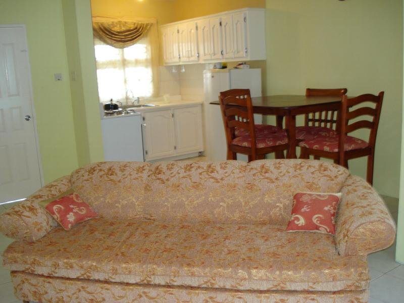 affordable vacation  in mandeville jamaica - Image 1 - Saint Ann's Bay - rentals