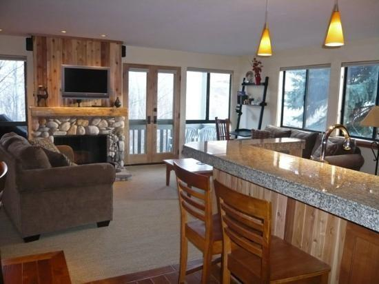 Cottonwood #1474, Sun Valley - Remodeled Deluxe Condo with Sun Valley amenities - Image 1 - Sun Valley - rentals