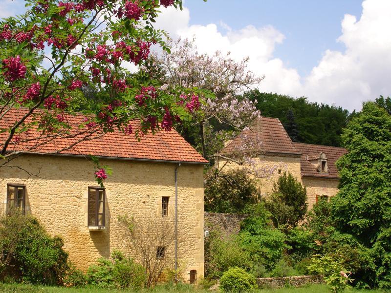 exterior - Two Rental gites with heated pool at the Estate,  Clos de la Comtesse, Dordogne France for 2-8 persons. (website: hidden) - Veyrignac - rentals