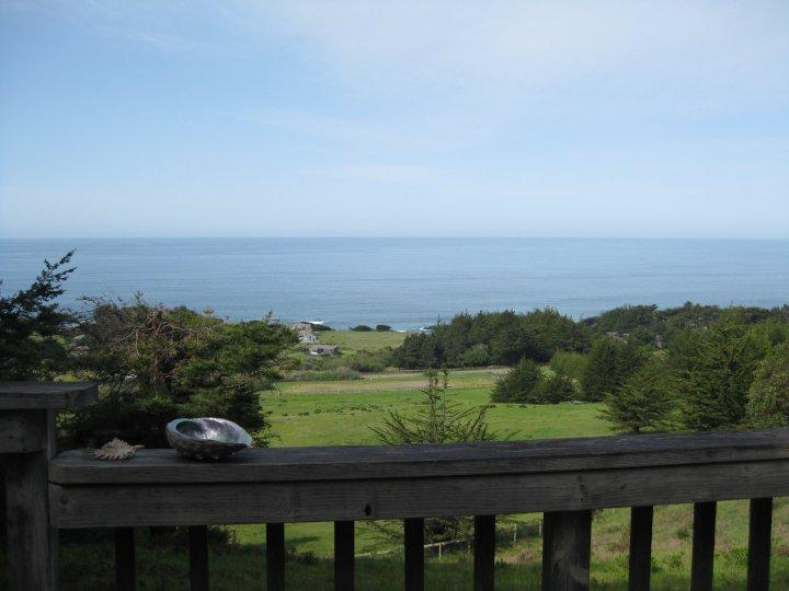 View from deck - Sea Ranch home with Ocean and Redwood Views! - Sea Ranch - rentals