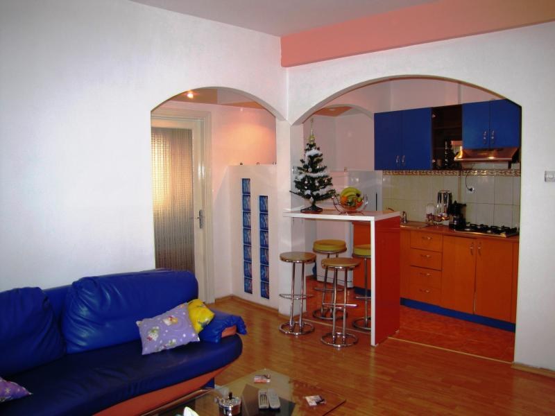 One bedroom apartment Bucharest city center - Image 1 - Bucharest - rentals