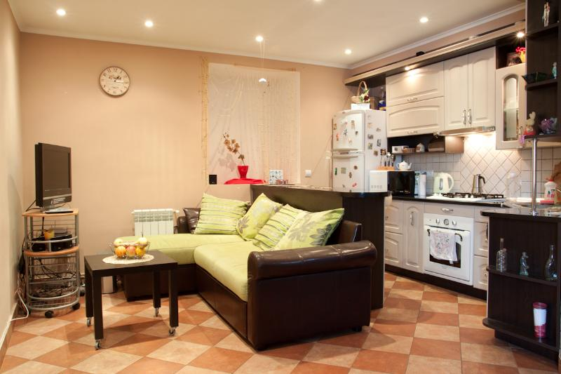 Cheap apartment in the city center - Image 1 - Lviv - rentals